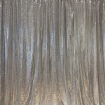 booth silver sequin backdrop